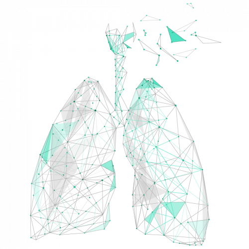 Lungs Fractal